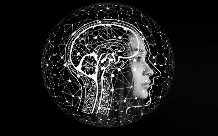 Intelligenza studio tecnologia (Pixabay)