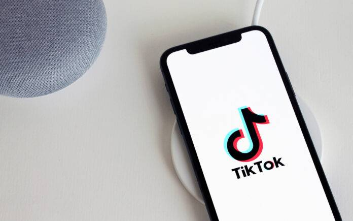Smartphone TikTok lavoro (Pixabay)