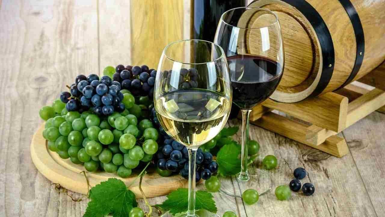 vino perfetto amazon