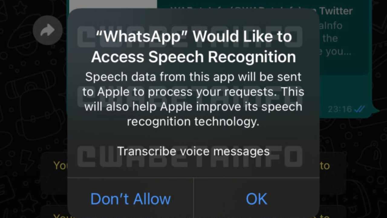 WhatsApp sviluppa comodissima funzione Anti-Vocali: ecco di cosa si tratta